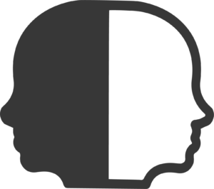 MG Seminare Wahrnehmung und die geistigen Prozesse Icon